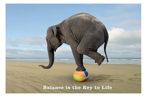 balance_elephant