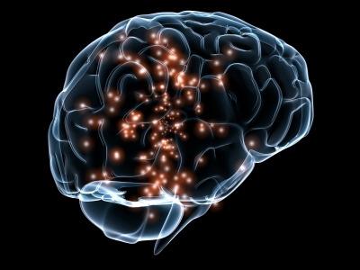 health-psychology-phd_brain